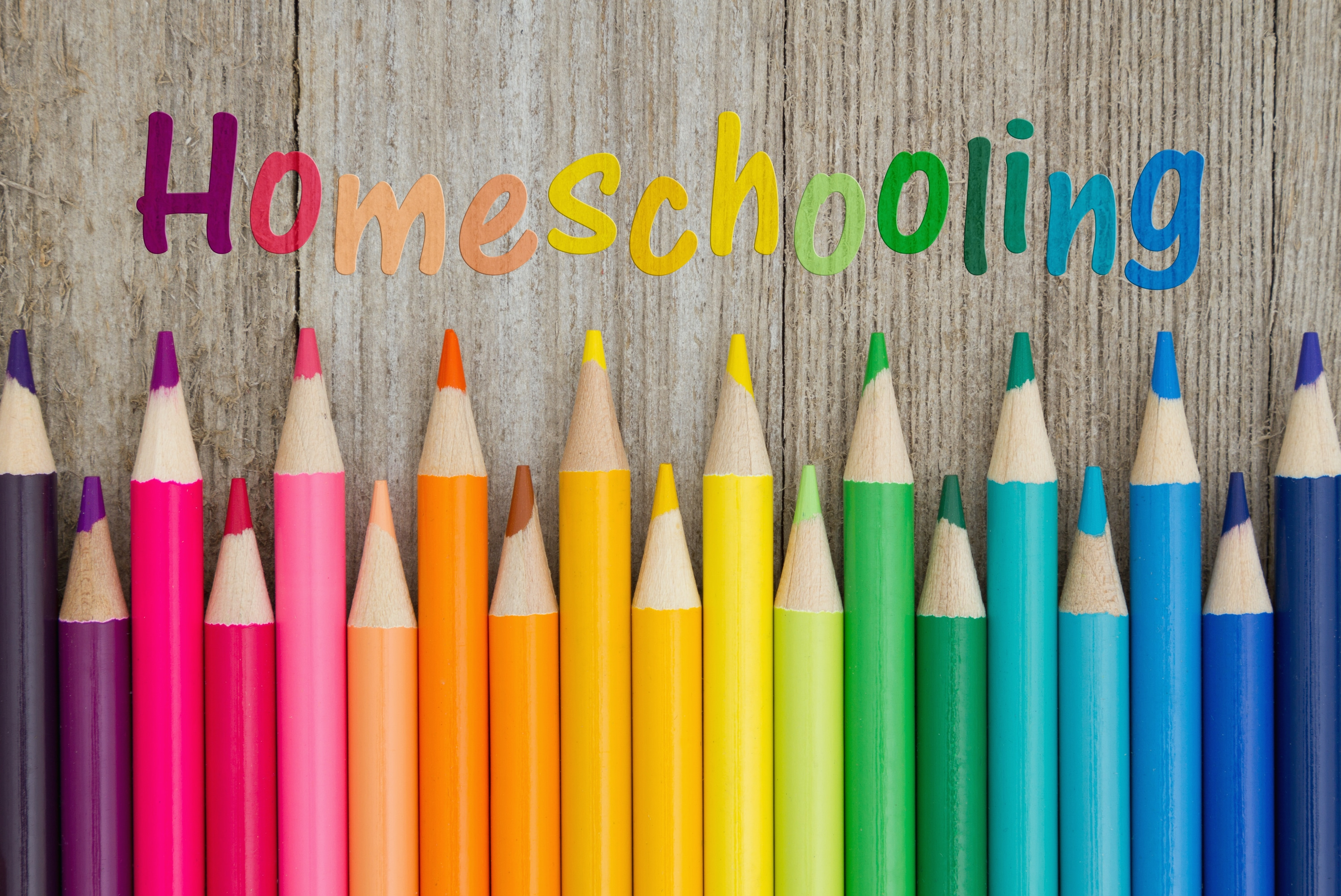 5 Costs of Homeschooling - Home School Curriculum, Programs & Books
