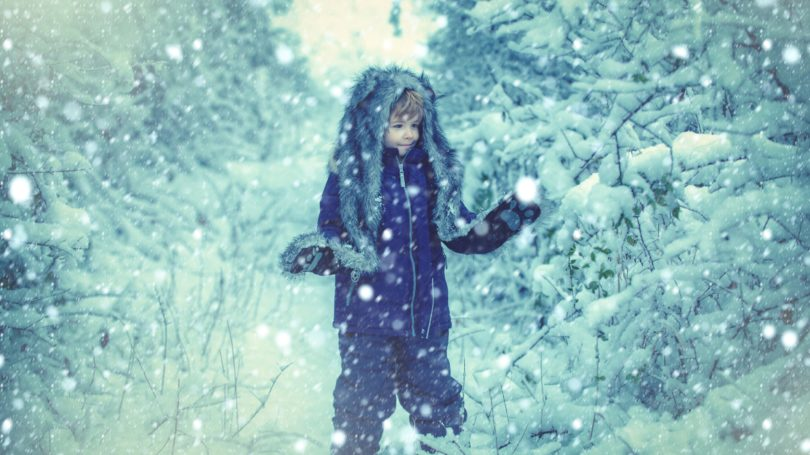Boy In Snowy Field During Snow Storm Trees