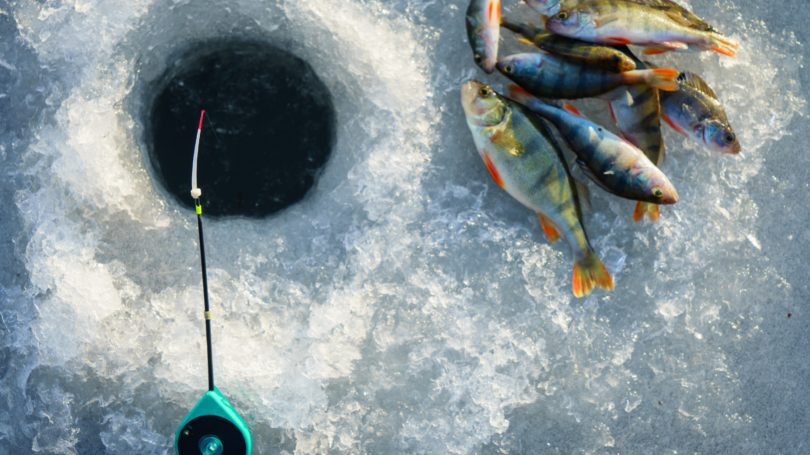 Ice Fishing In The Winter Pole