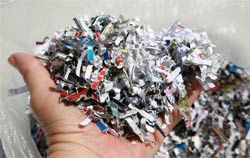 shredded paper credit cards