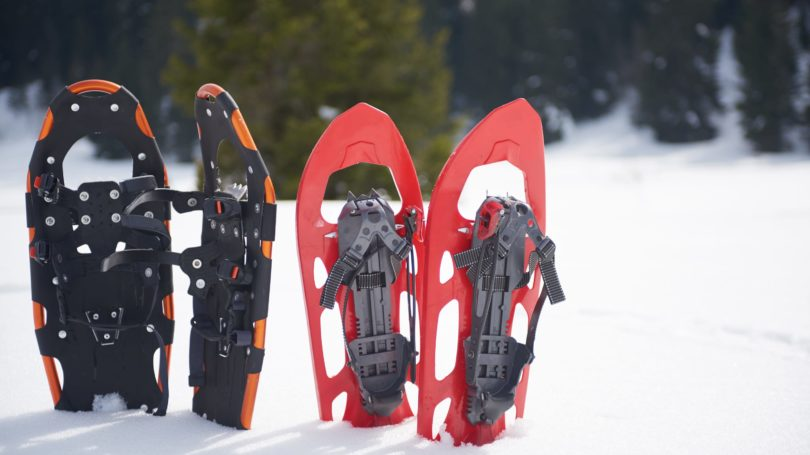 Snow Shoes In The Ground Winter Sport Walking