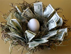 nest egg cash