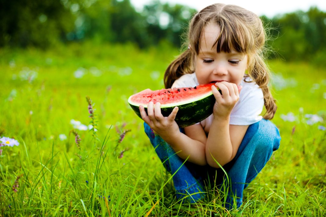 Little Girl Eating Watermelon In Field Of Grass