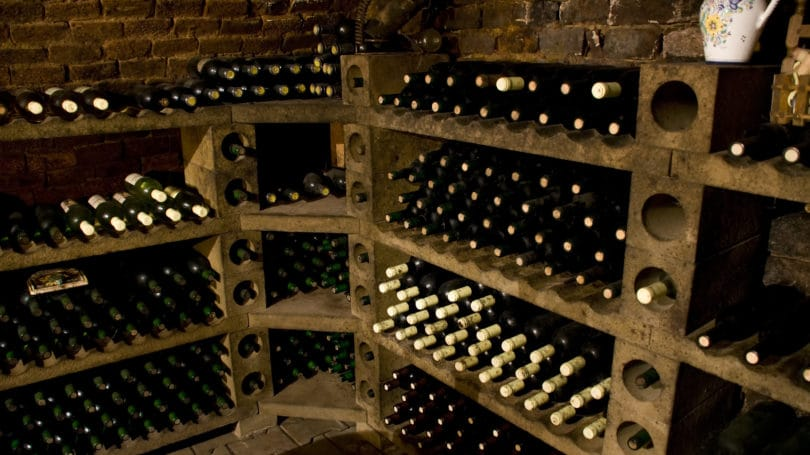 Professional Wine Facility Storing