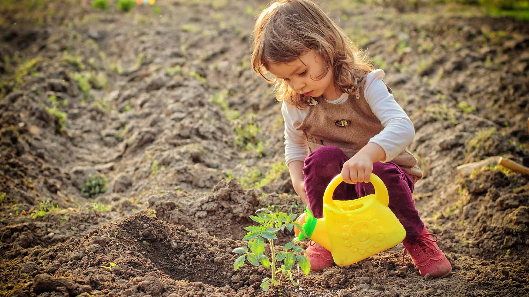 little girl watering garden plants
