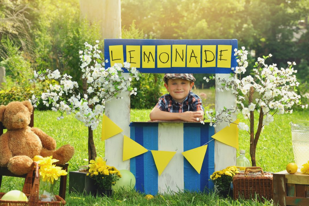 Boy Lemonade Stand Bear Outdoors