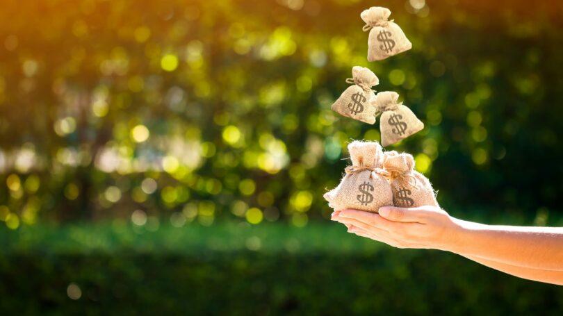 Money Bags Outdoors Green