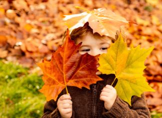 Child Playing On Pile Of Fallen Leaves Autumn Fall Outdoors
