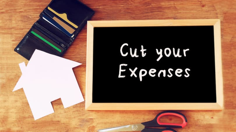 Cut Expenses Budget