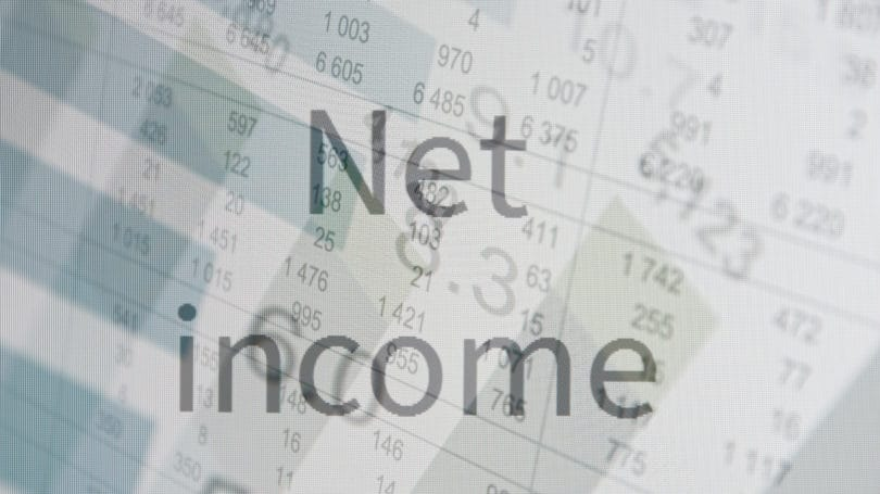 Net Income Spreadsheet Calculation