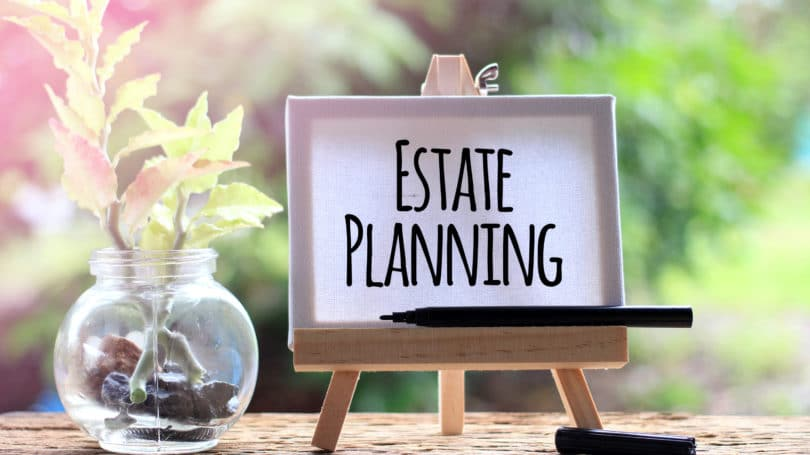 Estate Planning Easel Pen Plant Bowl