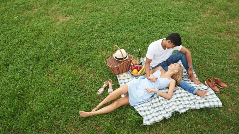 Picnic In The Park Outdoors Summer Couple