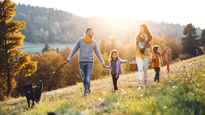 Young Family Parents Kids Pet Dog Walking Hiking Mountain Meadow Hill