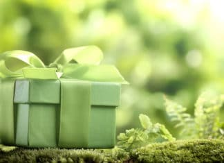 Best Green Unique Gifts Ideas