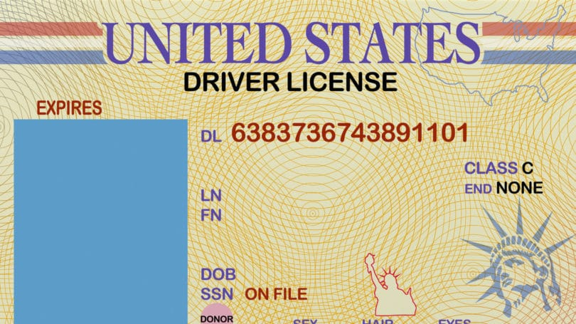 Drivers License Id Card