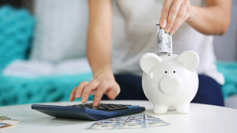 Piggy Bank Savings Calculator Cash