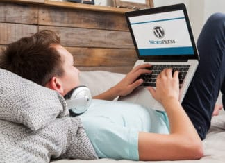 Wordpress Blogger Typing Laptop Young Male