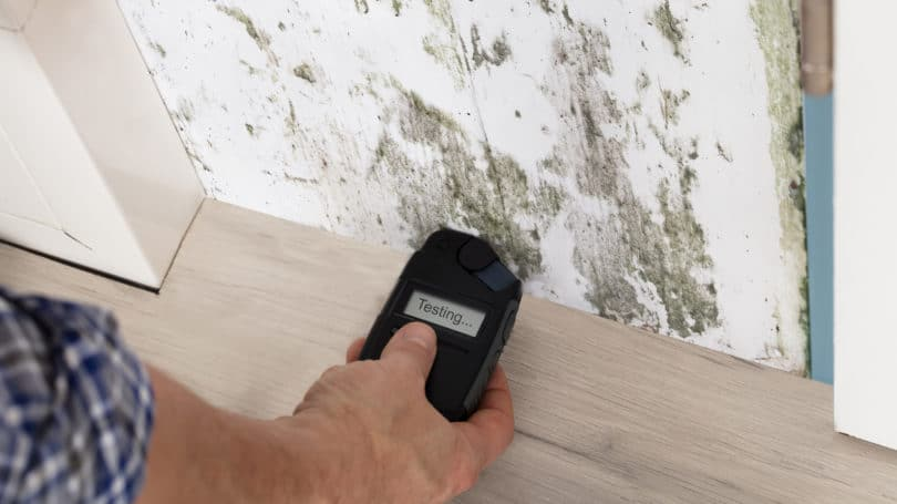 Man Testing Wall For Mold Portable Device
