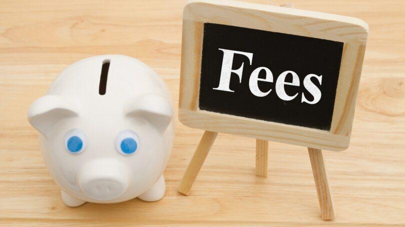 Bank Fees Easel Pig