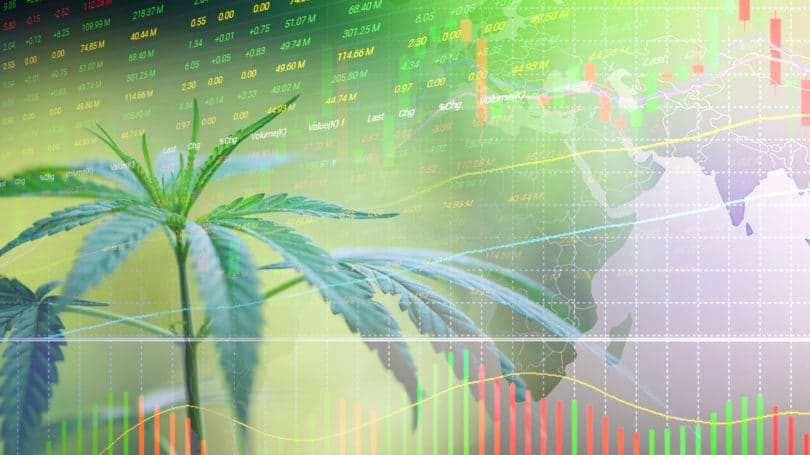 Investing In Cannabis Marijuana Stock