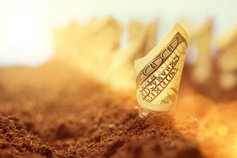 Harvest Money