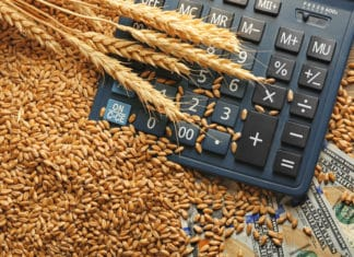 Cash Wheat Germs Calculator Frugal Living