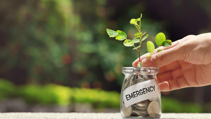Growing Emergency Fund Plant Jar Coins