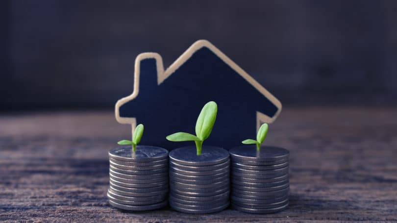 Real Estate House Coins Growth Investment