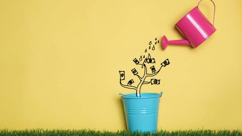 Pink Watering Can Blue Pail Growing Money Tree Investment