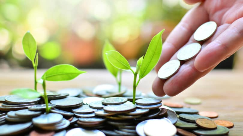 Investing Coin Growth Concept Investment Finance