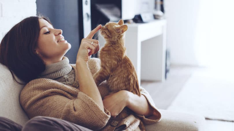 Young Woman Wearing Sweater Cuddling Pet Cat