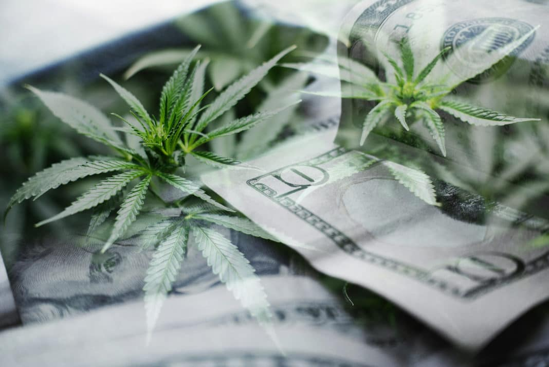 Cannabis Leaves Money Cash Investment