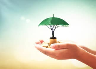 Umbrella Security Growing Investment Concept