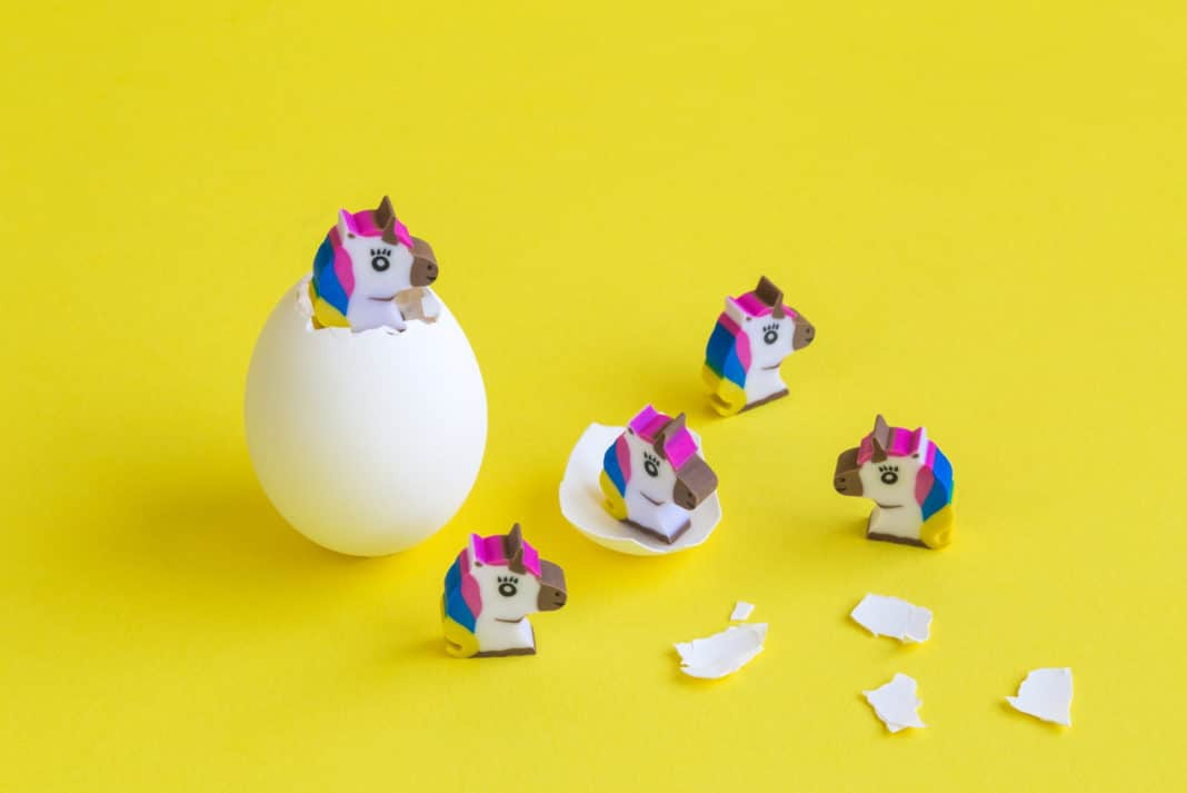 Unicorns Hatching Start Up Company Concept