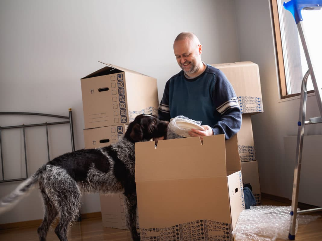 Man Packing Boxes Home Dog