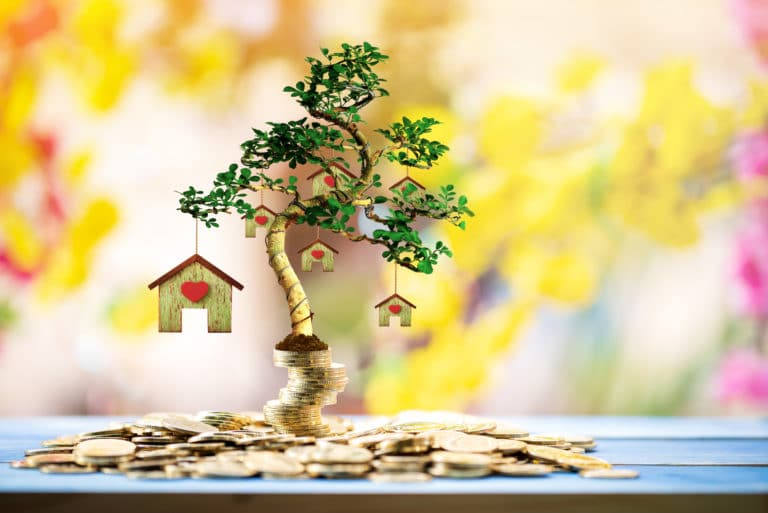 Tree With Houses Hanging Investment Property Growing Capital Gains